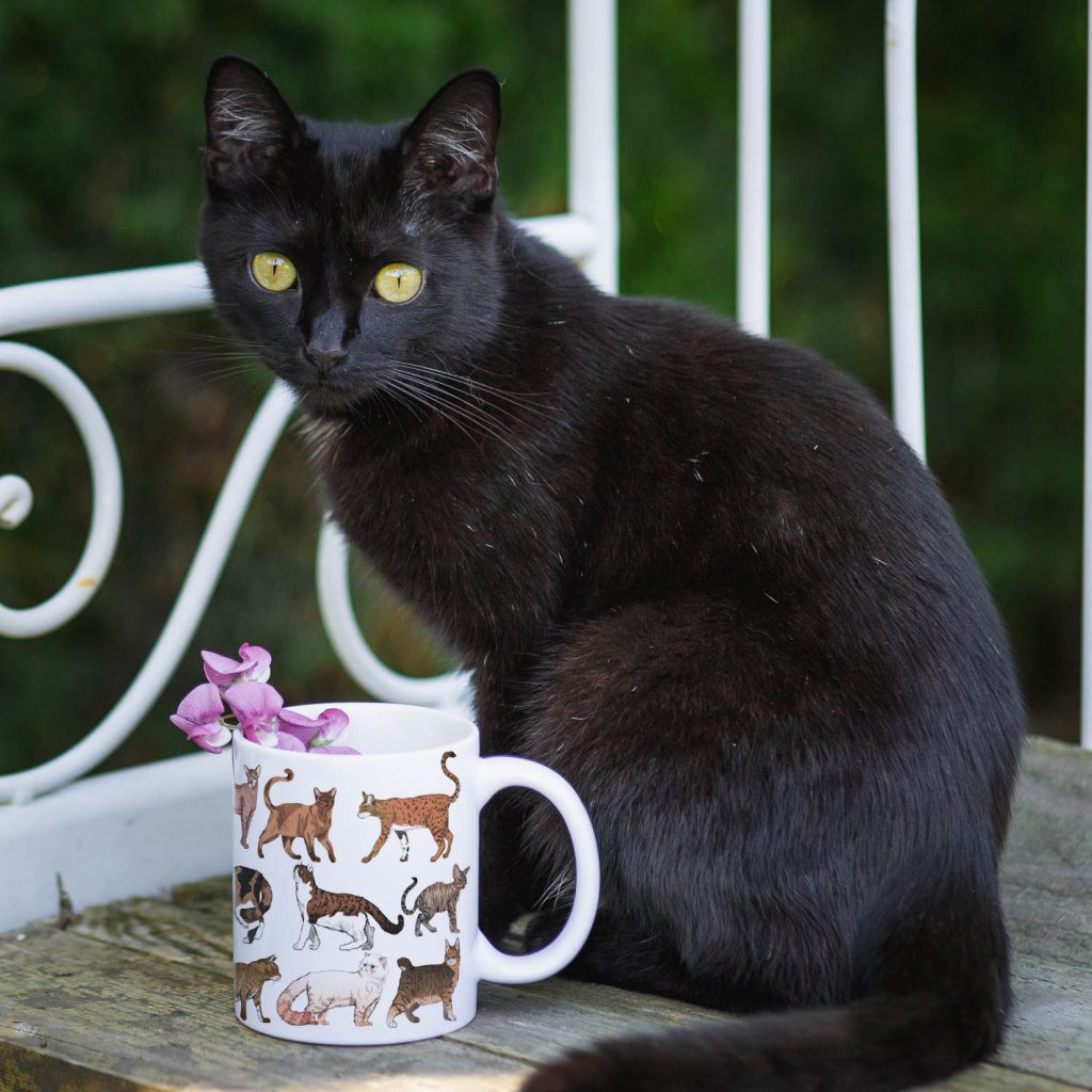 Kubek z rasami Kotów