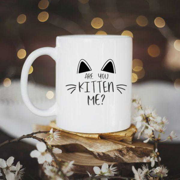Kubek Are You Kitten Me?